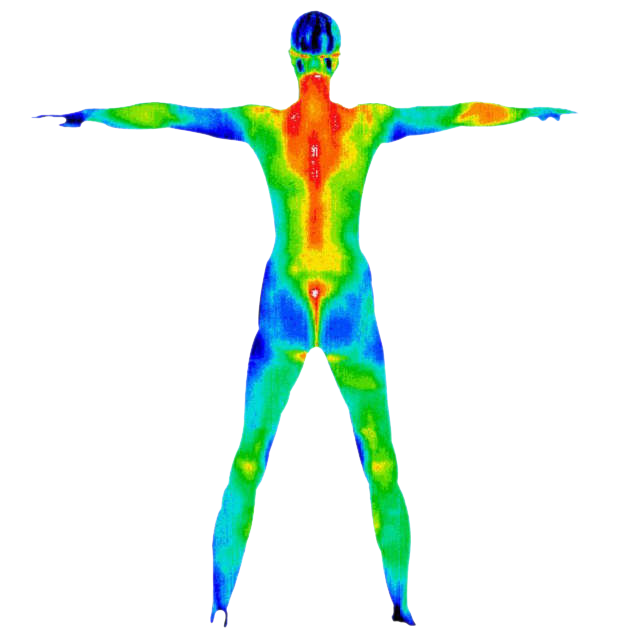 Thermography Screen from Men