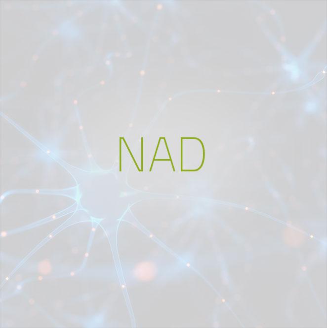 014-NAD-Nicotinamide-Adenine-Dinucleotide-Treatment-Infusio