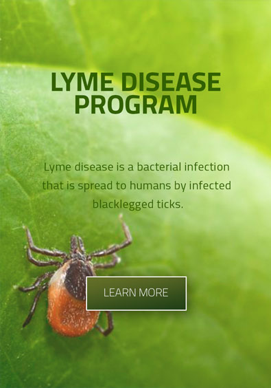 Chronic Lyme Disease Treatment Program