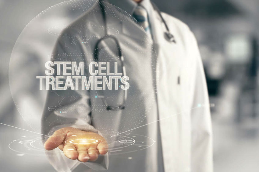 Five Types of Stem Cells and Where They Come From